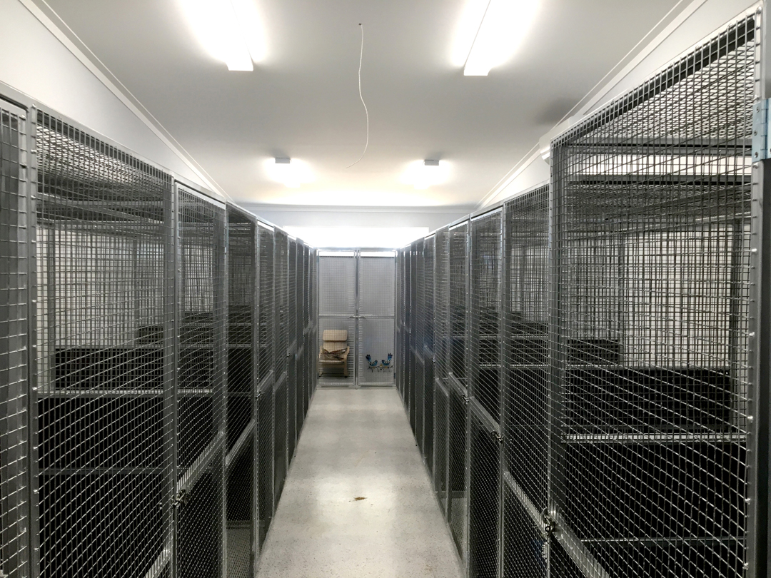 Custom Fabrication for Baldivis Boarding Kennels